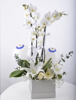 Mavi Boncuğum Beyaz Orkide Çiçeği  çiçek gönder
