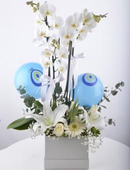 Nazar Değmesin Orkide Çiçeği Aranjmanı  çiçek gönder