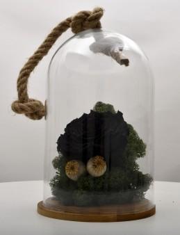 Bir Tek Sen Varsın Solmayan Siyah Gül  çiçek gönder