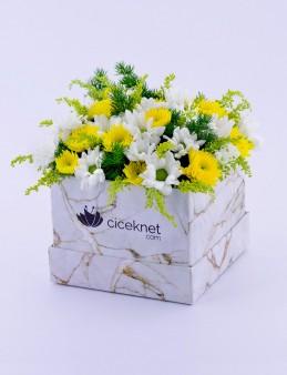 Mermer Desenli Kutuda Bahar Aranjmanı  çiçek gönder