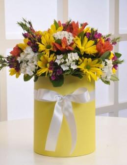 Kır Bahçesi  çiçek gönder