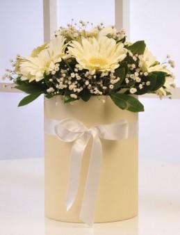Kutuda Beyaz Gerberalar  çiçek gönder