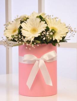 Alman Papatyası  çiçek gönder