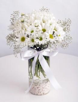 Papatya Küresi  çiçek gönder