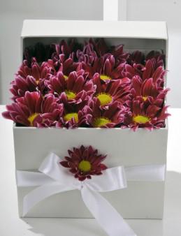 Geçmişten Bir Bahar Kır Çiçeği Aranjmanı.  çiçek gönder