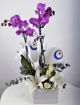 Buhulu Gözler Mor Orkide Çiçeği  çiçek gönder