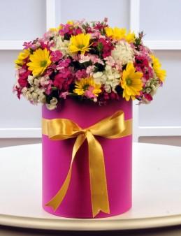 Baharın Gelişi  çiçek gönder