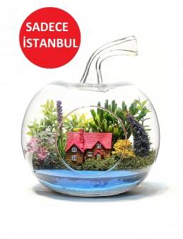 Teraryum Hayal Bahçem Terarium çiçek gönder