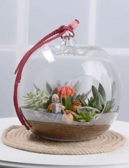 Toprak Kokulu Terrarium  çiçek gönder