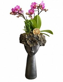 Çiçekçi Kız Mini Orkide Orkideler çiçek gönder