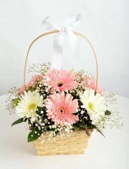 Sepette Gerbera Aranjmanı  çiçek gönder
