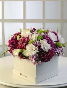 Ada Sahilleri  çiçek gönder