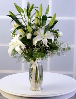Beyaz Hisler  çiçek gönder