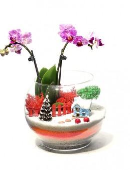 Karlı Bir Aralık Orkideler çiçek gönder
