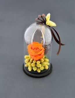 En Güzel Hikayem Solmayan Gül  çiçek gönder
