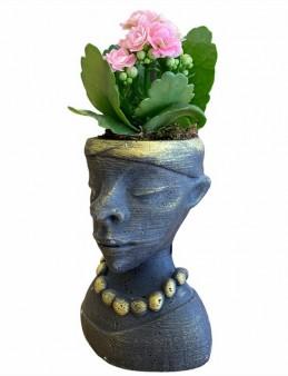 Özel Tasarım Kalanchoe Bitkisi Saksı Çiçekleri çiçek gönder