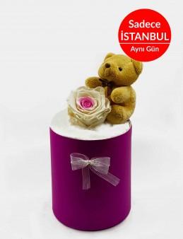 Kutuda Solmayan Gül (Yapay) Terarium çiçek gönder