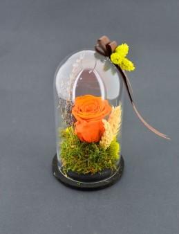 Yeter ki Gül Sevgilim  çiçek gönder
