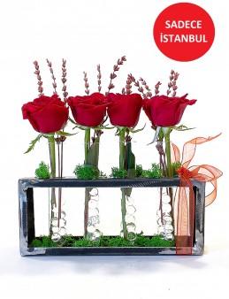 Kırmızı Güller ve Şoklanmış Lavanta Aranjmanlar çiçek gönder