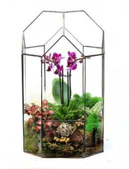 Vitray Cam Teraryum Mini Orkide Bahçesi Orkideler çiçek gönder