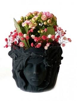 Özel Tasarım Saksıda Kalanchoe  çiçek gönder