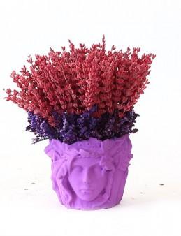 Özel Tasarım Saksıda Lavanta  çiçek gönder