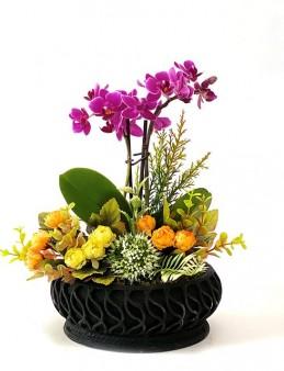 Özel Tasarım Mini Orkide Çiçeği  çiçek gönder