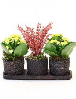 Özel Tasarım Üçlü Set  çiçek gönder