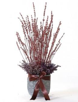 Şoklanmış Renkli Lavantalar  çiçek gönder