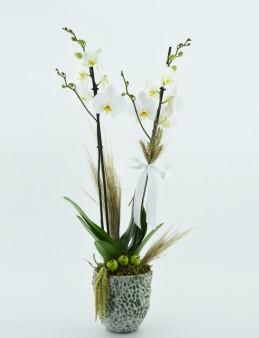EL Yapımı Vazoda İkili Beyaz Orkide  çiçek gönder