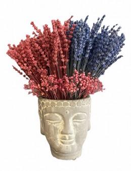 Budha Saksıda Lavantalar  çiçek gönder