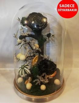Gold Fanus İçerisinde Siyah Solmayan Gül Aranjmanlar çiçek gönder