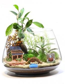 Teraryum ile Bonsai'nin Uyumu  çiçek gönder