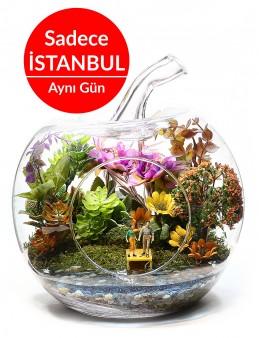 Akdeniz'de Sen ve Ben Yapay  Teraryum Terarium çiçek gönder