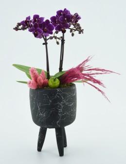 Mini orkideli Doğal Tasarım  çiçek gönder