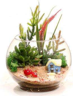 Mini Bahçe Teraryum Bahçesi  çiçek gönder