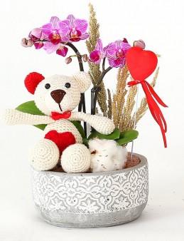 Mini Orkide ve Ayıcık  çiçek gönder