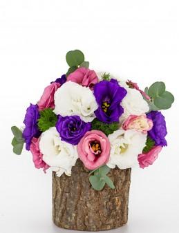 Kütükte Renk Cümbüşü Lisyantüs  çiçek gönder