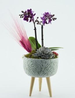 Özel Tasarım Üç Ayaklı Vazoda Minyatür Orkide  çiçek gönder