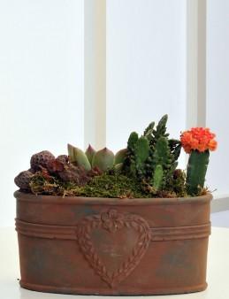 Bakır Eskitme Terrarium  çiçek gönder