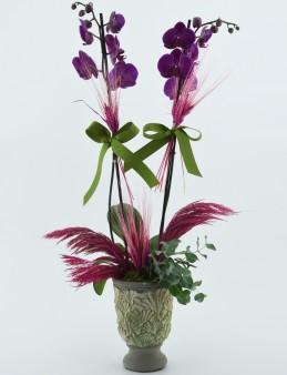 Özel Kadeh Vazoda İkili Mor Orkide  çiçek gönder