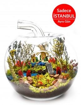 Sonsuza Kadar Seninle Yapay Teraryum Terarium çiçek gönder