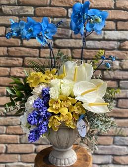 Mavi Orkide Tasarım  çiçek gönder