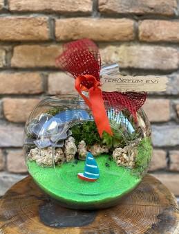Küçük Boy Elma Teraryum  çiçek gönder