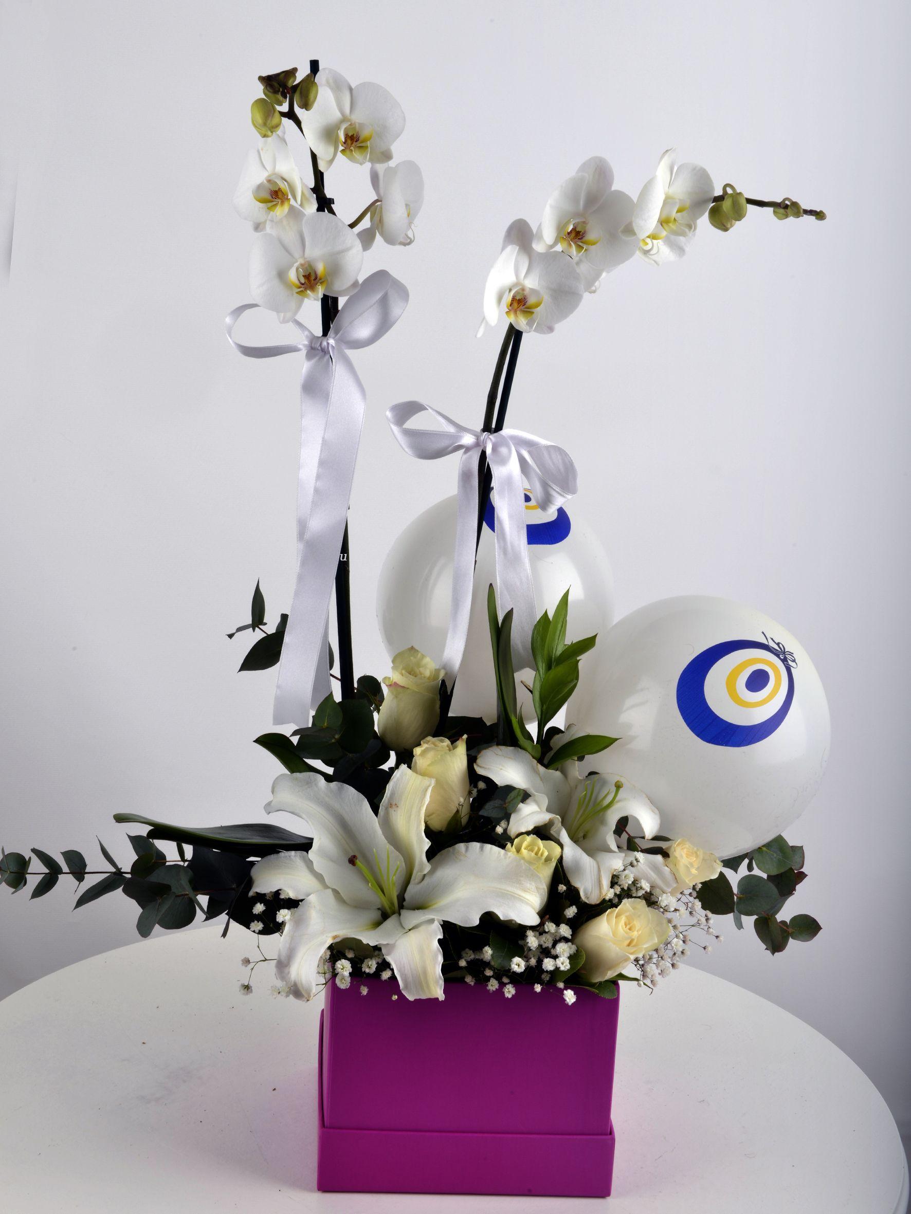 Güzel Bir Başlangıç Orkide Çiçeği  çiçek gönder