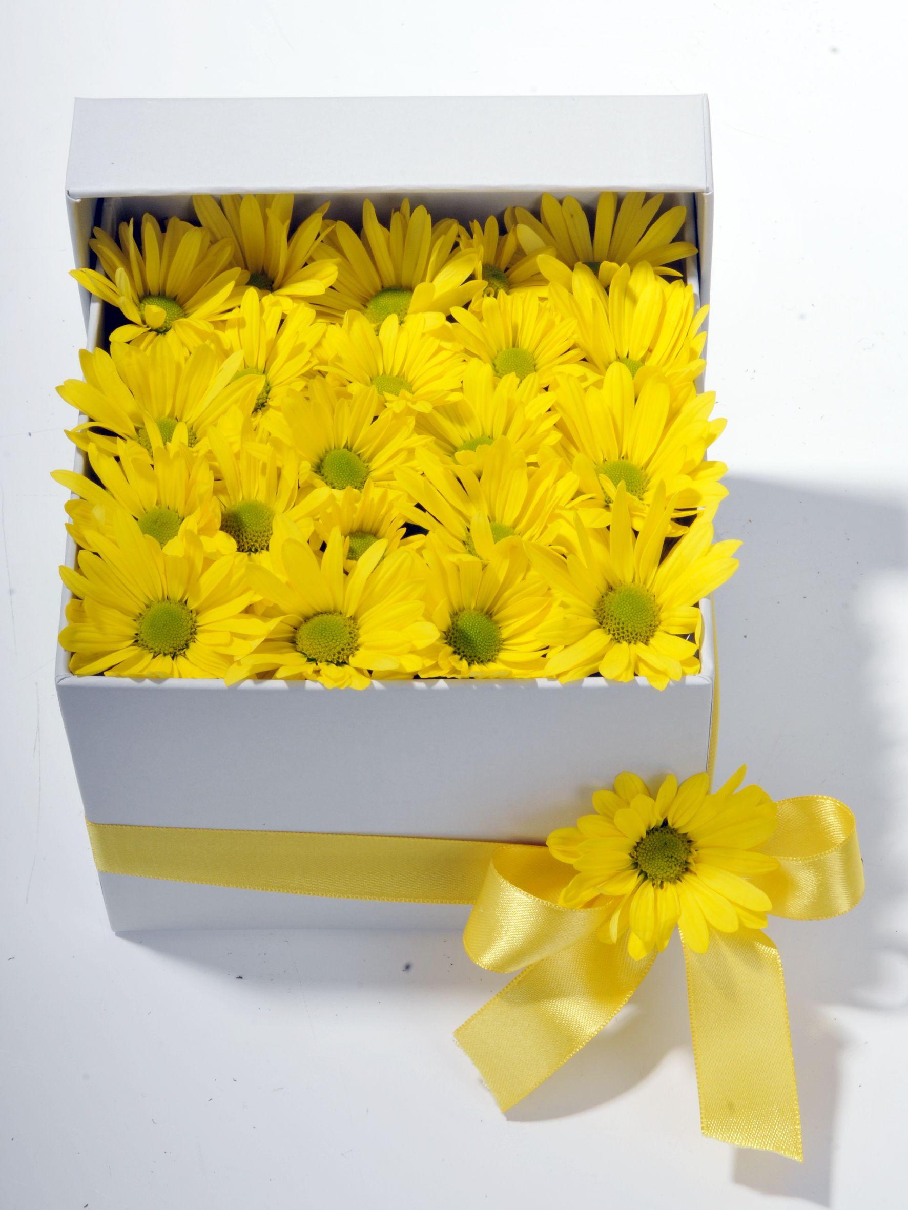 Bahar Özlemi Kır Çiçeği  çiçek gönder