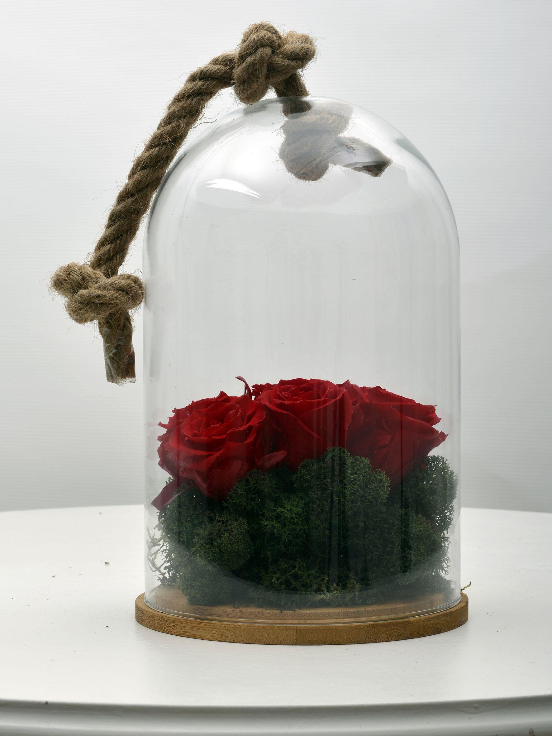 Solmayan Kırmızı  Güller  çiçek gönder
