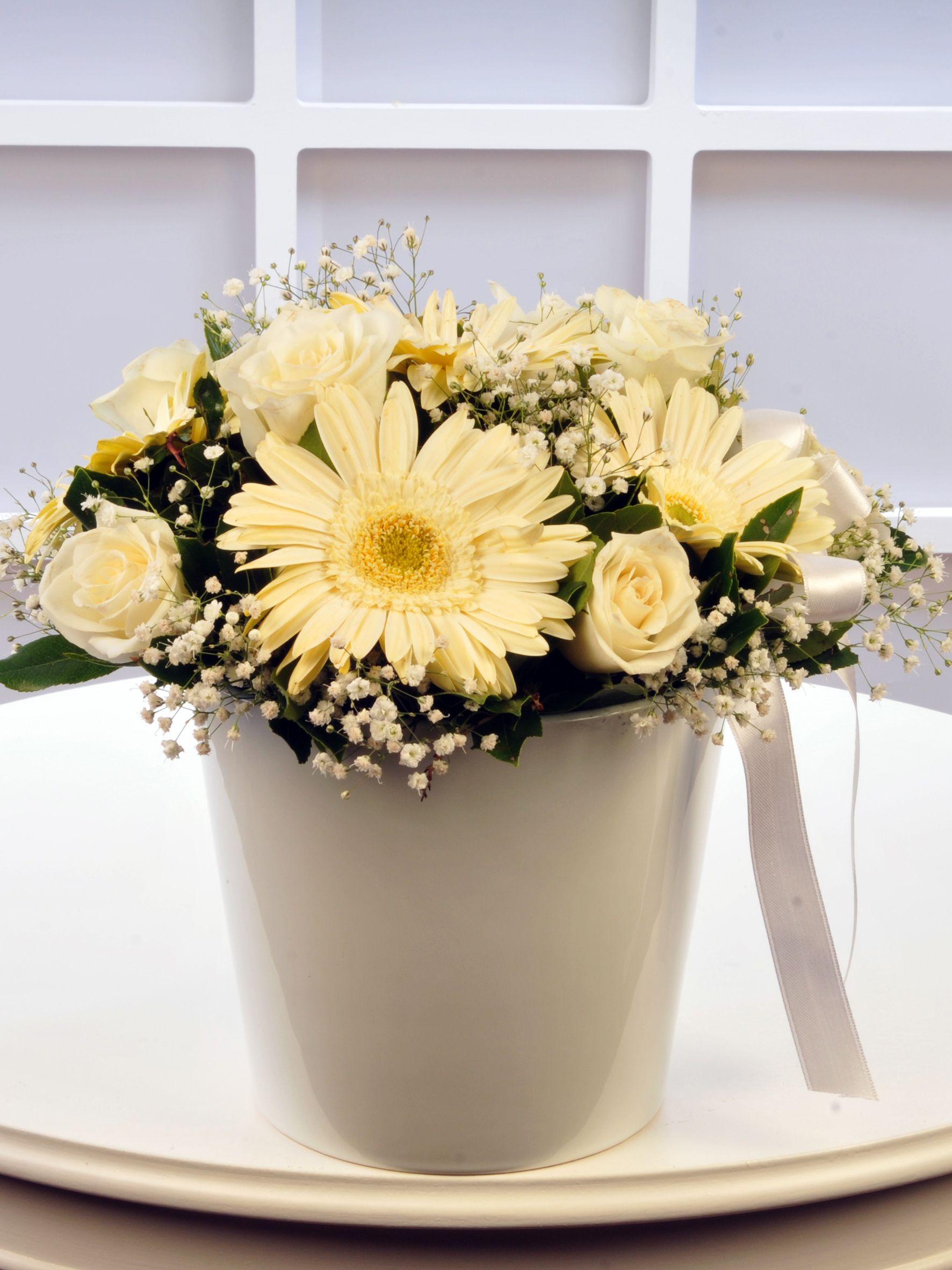 Beyaz Meleğime.  Aranjmanlar çiçek gönder