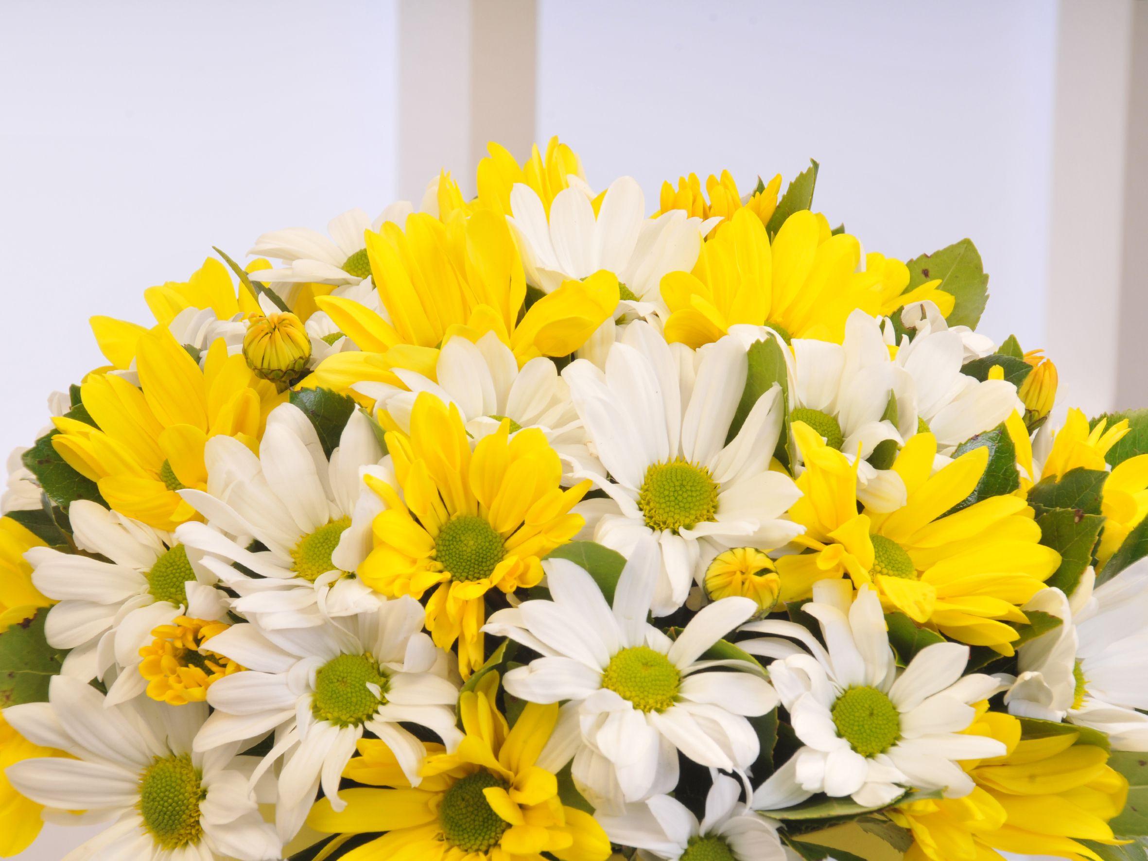 Sarı Silindir Kutuda Renkli Biçmeler . Kutuda Çiçek çiçek gönder