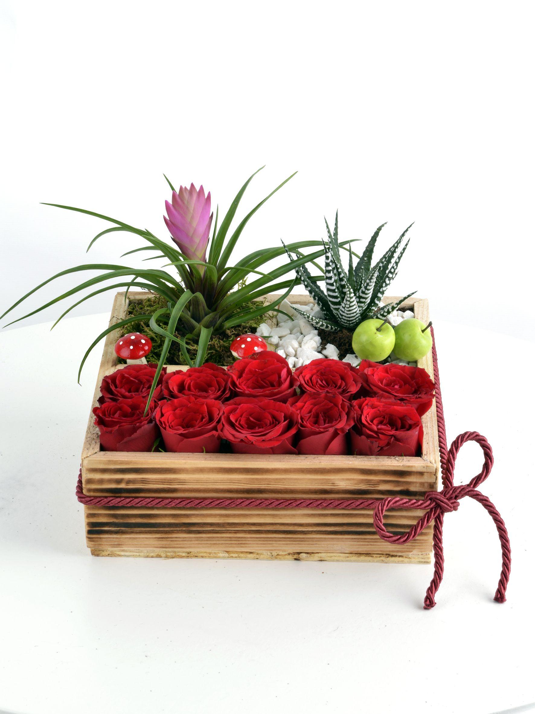 Teraryumlu Gül Bahçesi  çiçek gönder